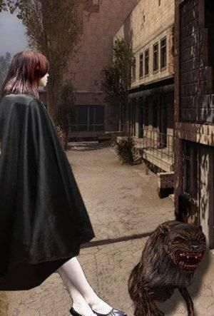 Диана темная - Легендарные личности Зоны (Из мира S.T.A.L.K.E.R.)